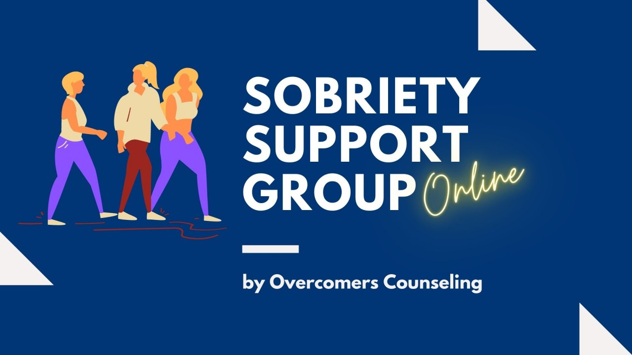 Sobriety Support Group (Online)